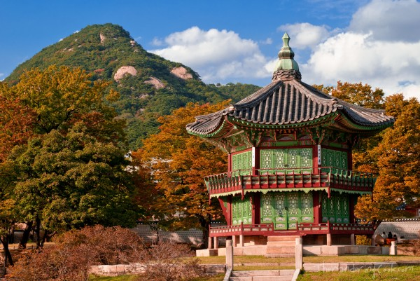 South Korea with Magical Korea