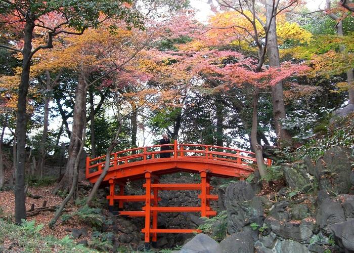 Koishikawa Korakuen Autumn Magical Japan